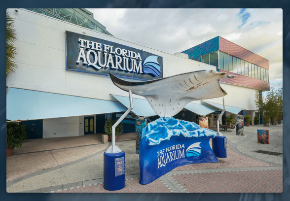 The-Florida-Aquarium-Connect-With-The-Sea-1